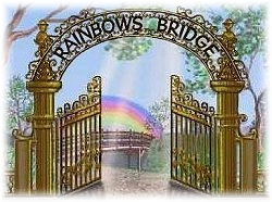 RAINBOWS   BRIDGE
